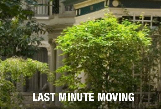 Last Minute Moving Company - All Jersey Movers - Local & Long Distance
